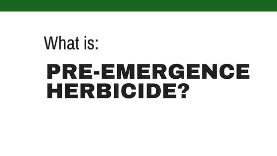 Pre-emergence herbicides: What They are & How to use Them