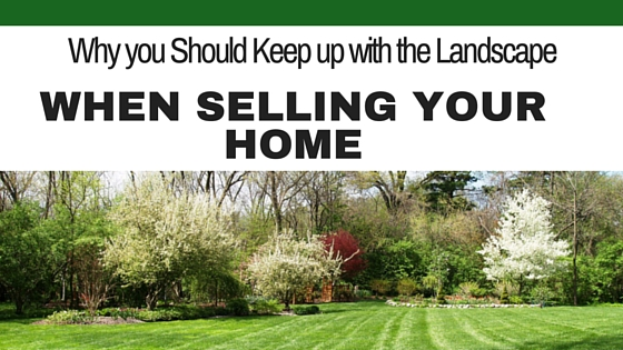 Why You Should Keep up with Landscaping When Selling Your Home