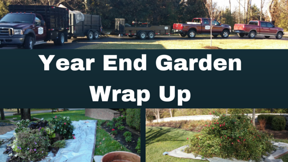 Year End Garden Wrap-Up: Watch the Weather not the Calendar