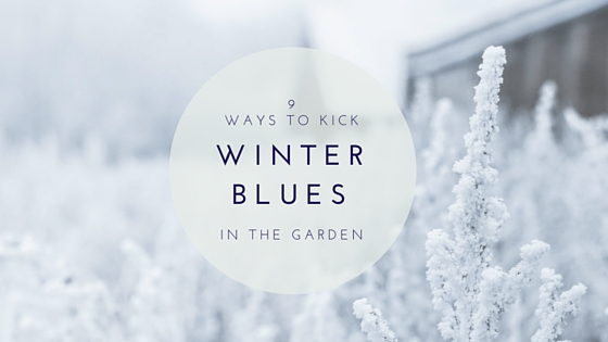 9 Ways Gardeners Kick Winter Blues