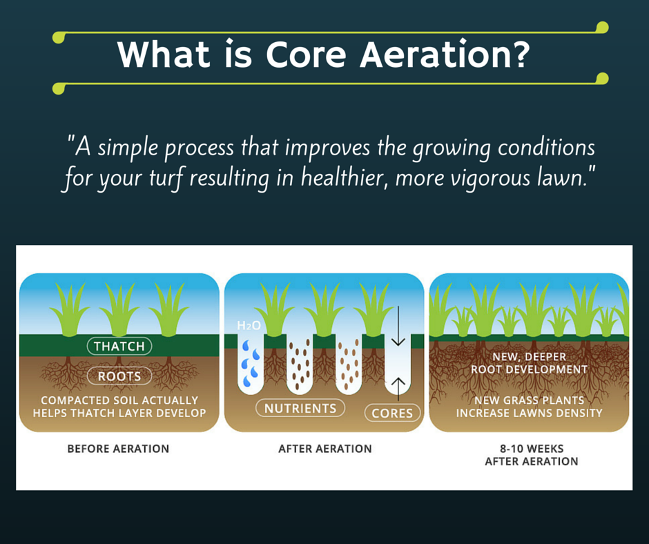 What is Core Aeration?