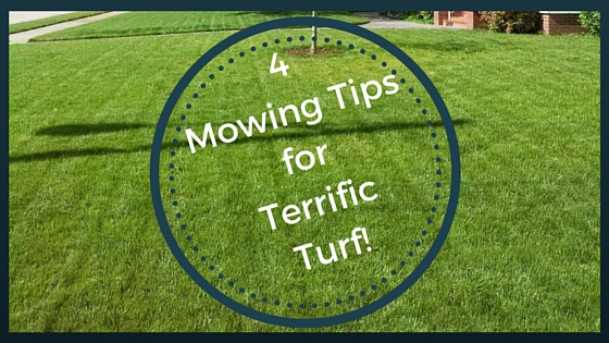 Mowing Tips for Terrific Looking Turf