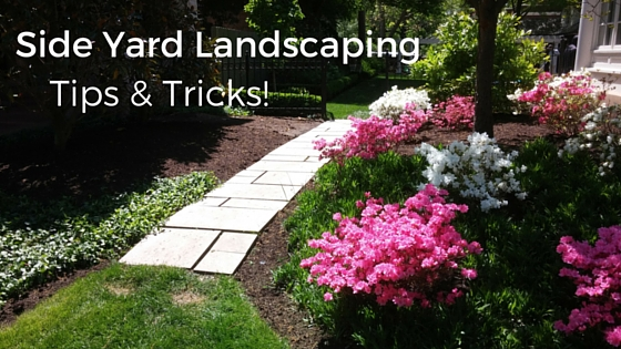 Side Yard Landscaping – Tips & Tricks!