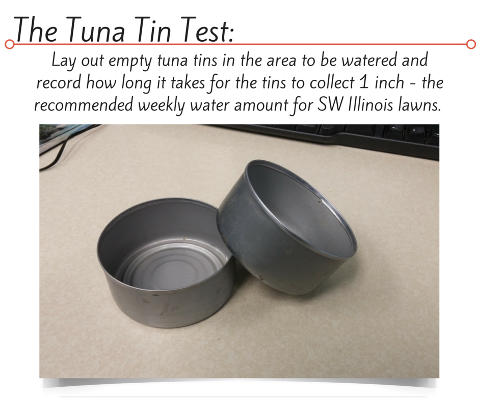 The Tuna Tin test is a quick and easy way to see if you're watering your plants and turf grass enough, or too much.