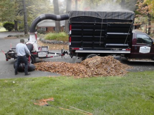 Our staff in action! Using a special debris loader to suck up and cut up piles of leaves in minutes.