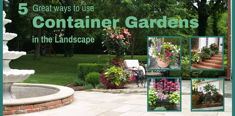 5 Ways to Use Container Gardens in the Landscape